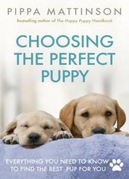 Choosing The Perfect Puppy