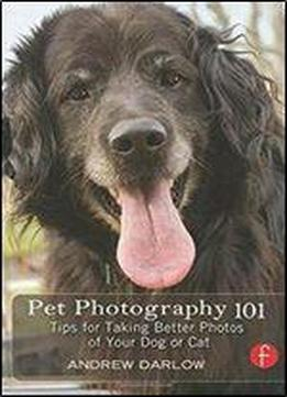 Andrew Darlow - Pet Photography 101: Tips For Taking Better Photos Of Your Dog Or Cat