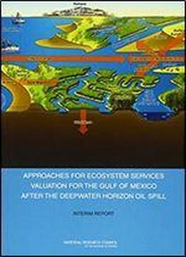 Approaches For Ecosystem Services Valuation For The Gulf Of Mexico After The Deepwater Horizon Oil Spill: Interim Report