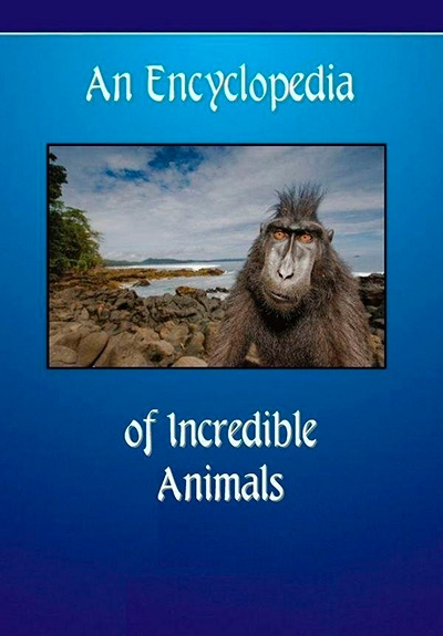 An Encyclopedia of Incredible Animals