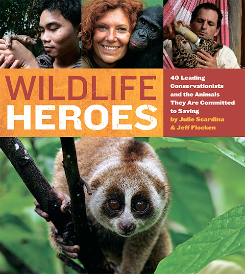 Wildlife Heroes: 40 Leading Conservationists and the Animals They Are Committed to Savin