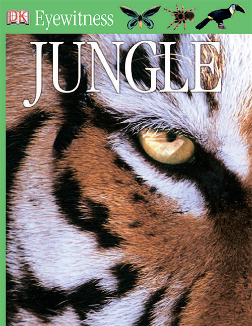 Jungle (Eyewitness Books)